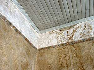 Mold from your AC unit